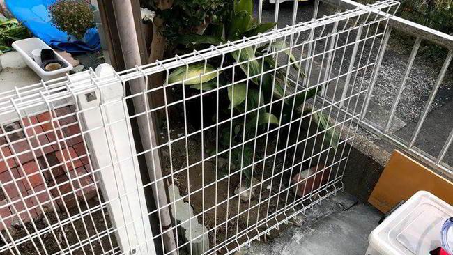 ★佐世保市船越町★スチールフェンスの扉の制作ばい③【木工仕事】