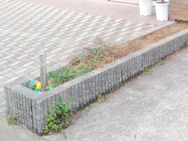 花壇を設置する前の場所