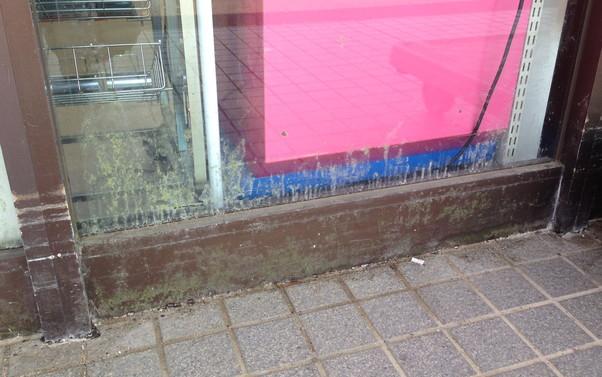 スーパーマーケットのガラスの苔