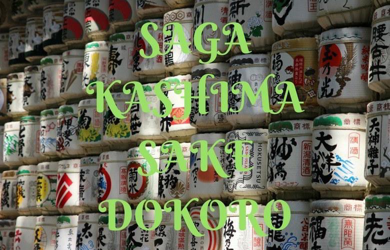 【代理・代行仕事】酒処佐賀県鹿島市にビニールハウスの見積たい