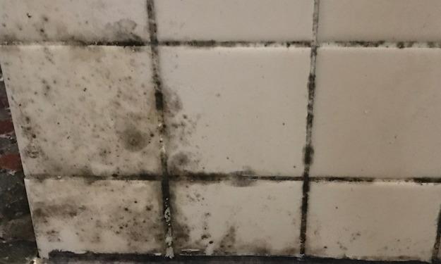 風呂場のタイルの汚れ3のアップ
