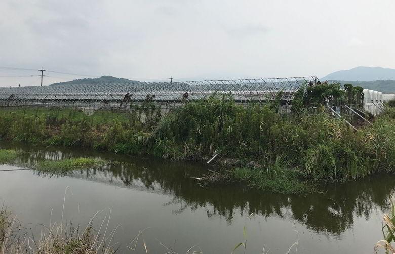 【解体仕事】佐賀県鹿島市のビニールハウス解体の最終日