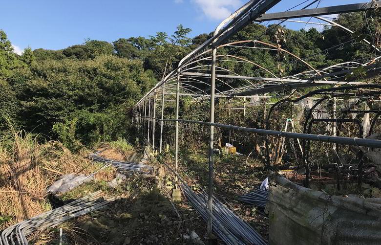 【解体仕事】ビニールハウスのアーチパイプの撤去
