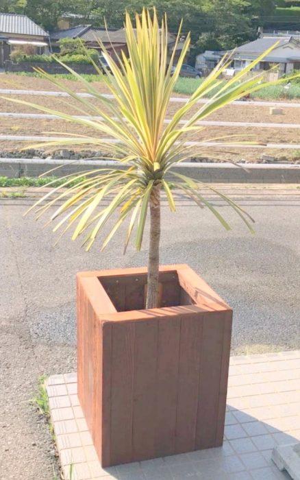 【木工仕事】ウッドプランターの作製